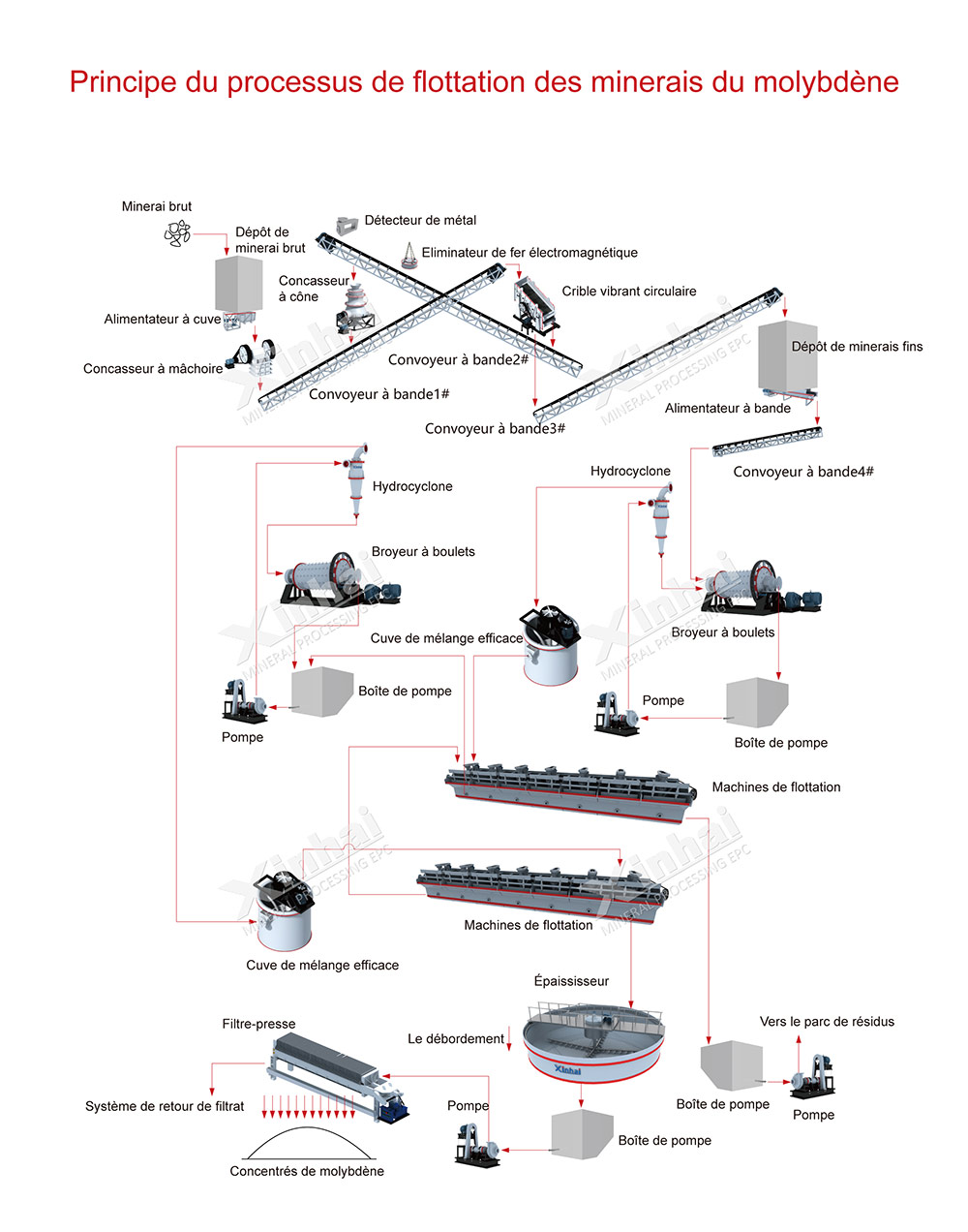 Processo de tratamento de minério de molibdênio